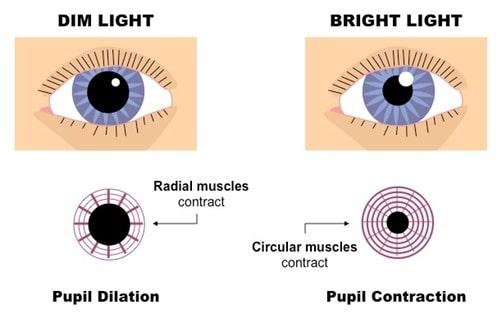 cara menjaga kesihatan mata