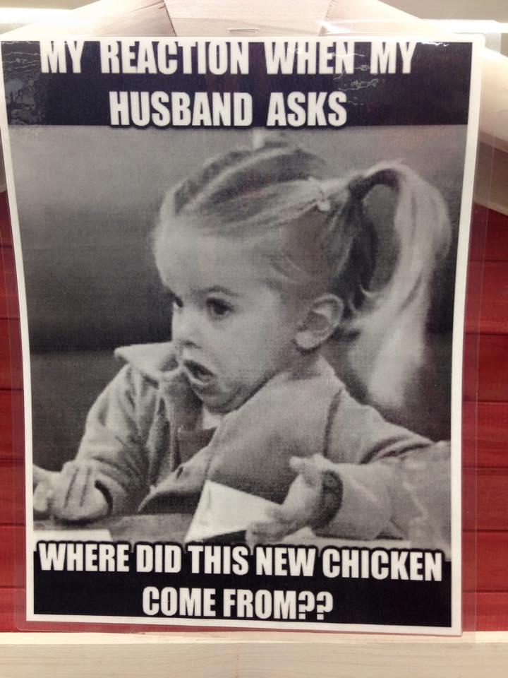 Chicken%2Bhumor.jpg
