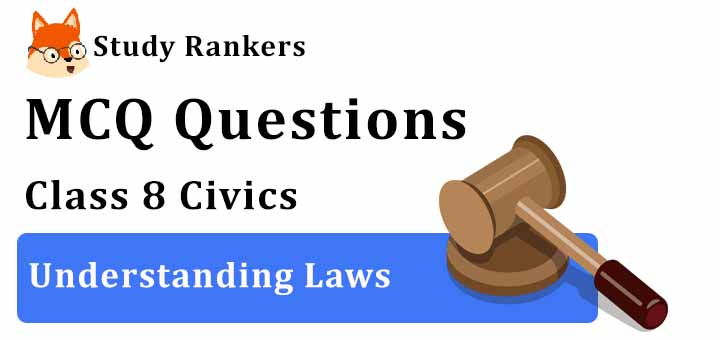 MCQ Questions for Class 8 Civics: Ch 4 Understanding Laws