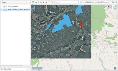 добавленный растровый слой на основной карте nextgis web