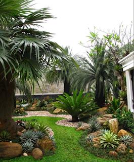 Galeri Taman - Tukang Taman Surabaya 52