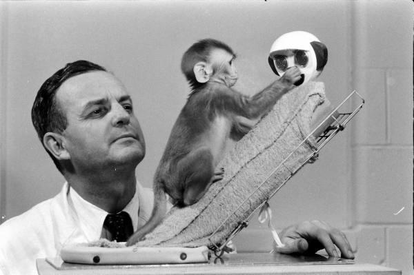 Όποιος ΔΕΝ έχει διαβάσει αυτό το πείραμα με τις μαϊμούδες! ΕΠΙΒΆΛΛΕΤΑΙ να το διαβάσει..