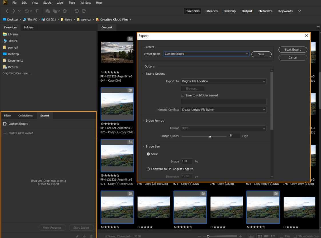 Adobe Bridge 2020 10.0.3.138 poster box cover