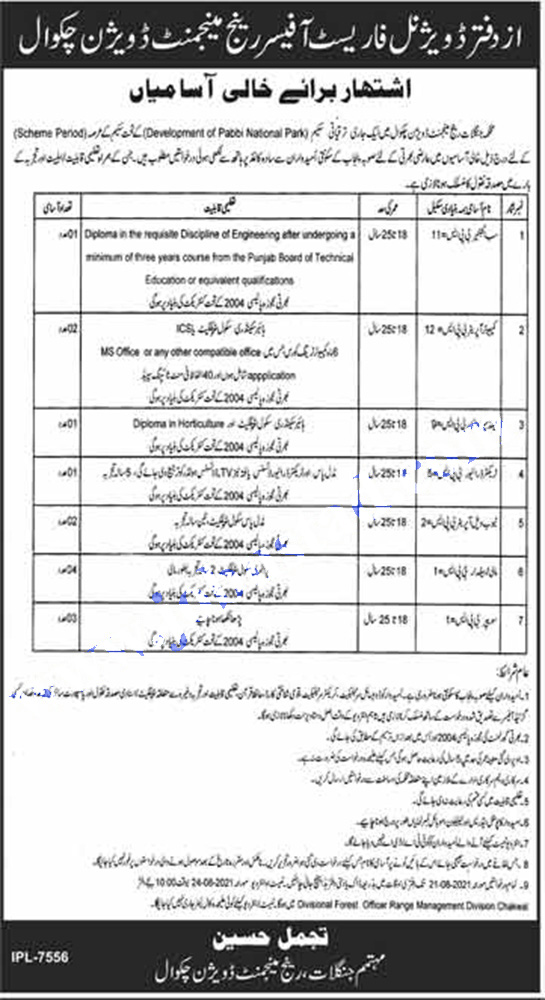 Forest Department Punjab Jobs 2021   Govt of Punjab Jobs 2021