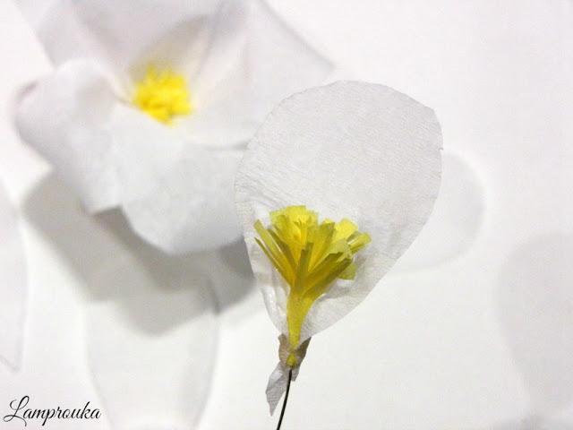 Χάρτινα λουλούδια diy