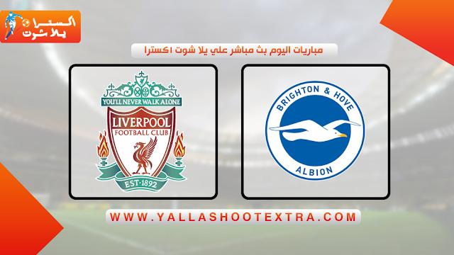 مباراة ليفربول و برايتون 30-11-2019 في الدوري الانجليزي