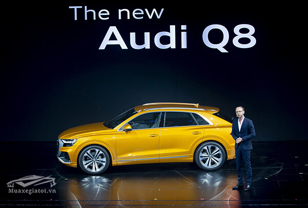 Audi Q8 2020 re-exports VMS 2019, highly likely to be genuine displacement