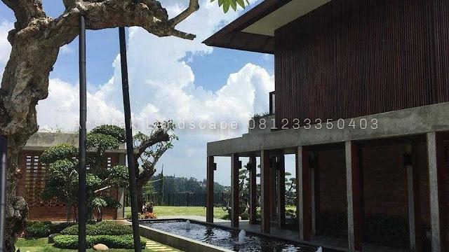 Tukang Taman Manado Jasa Pembuatan Taman Murah Dan Bergaransi Di Kota Manado Sulawesi Utara 081233350403 Jasa Tukang Taman Terbaik Dan Terpercaya Dapatkan Harga Pembuatan Taman Murah Di Kota Manado Jasa Tukang Taman Minimalis Manado, Jasa Tukang Taman Klasik Manado, Jasa Tukang Taman Kering Manado, Jasa Tukang Taman Tropis Manado, Jasa Tukang Taman Gaya Bali Manado Manado, Jasa Tukang Taman Vertical Garden Manado, Jasa Desain Taman Manado
