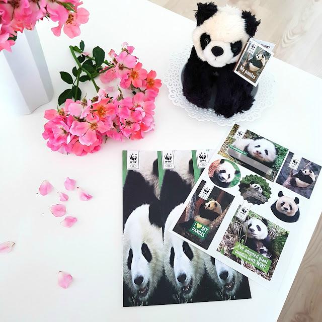 Adopcja pandy wielkiej | góry Qinling w Chinach | Pomagaj z WWF