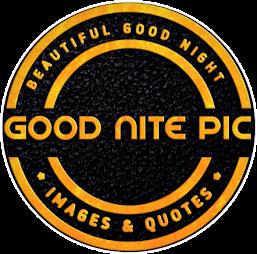 Good nite pic - Beautiful good night image's