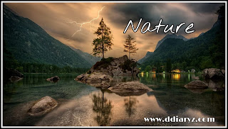 Nature Quotes and Nature Status