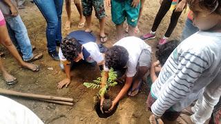 Em Picuí, alunos da Escola Josefa Suelene realizam plantio de árvores no pátio