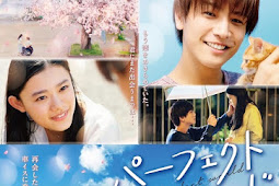 Sinopsis Perfect World (2018) - Film Jepang