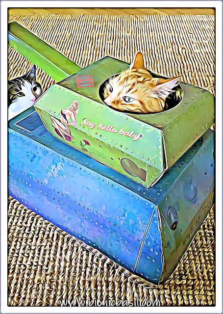 Tank Time with Fudge and Melvyn ©BionicBasil® Caturday Art