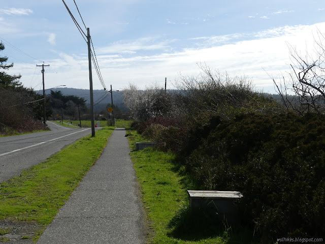 paved path beside the road