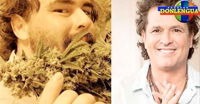 Hijo de Carlos Vives monto negocio de producción de Marihuana (para remedios y para drogarse)