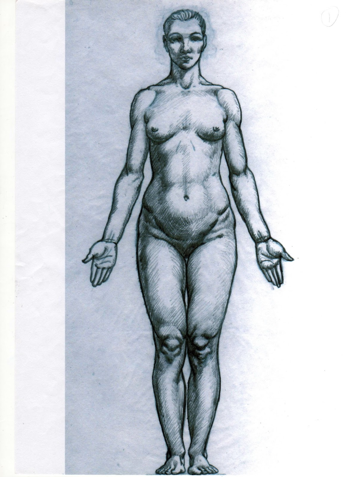 Artistic Anatomy Glasgow: Woman Surface Conception from Dr Paul ...