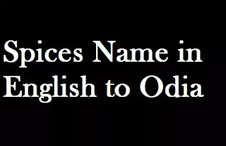 Different Spices Name in Oriya language | Spices Name in English to Odia