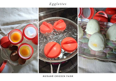 Egglettes test and review using farm eggs