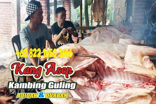 Resep dan Cara Memasak Kambing Guling Kang Asep Bandung