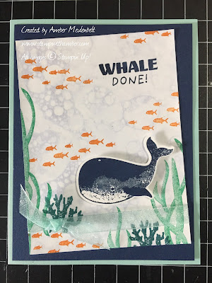 Whale-Done-Bundle