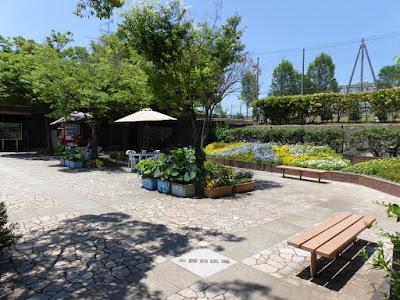 枚方市・市民の森(鏡伝池緑地) コミュニティゾーン