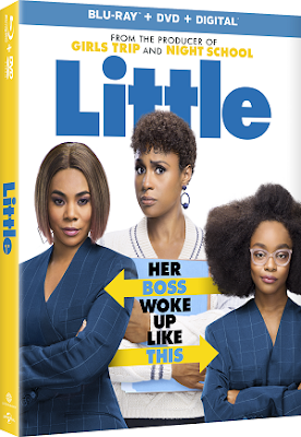 The New Movie Comedy LITTLE on DVD
