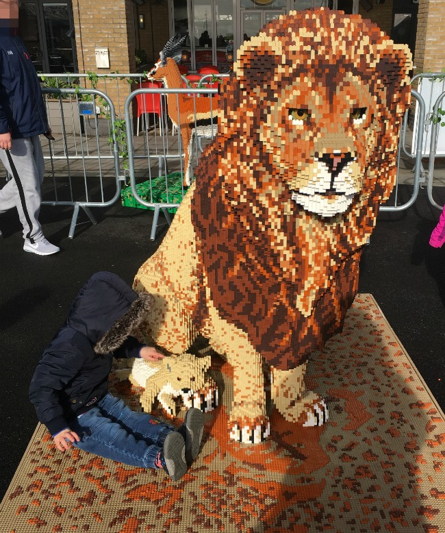 boy-sat-next-to-lion-cub-and-adult-lion-made-from-LEGO-bricks-Cardiff-Bay