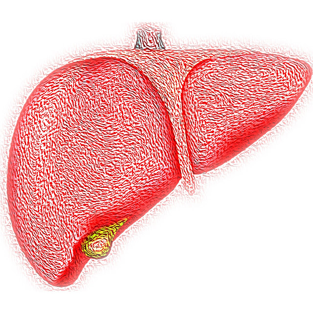 The 10 best superfoods will eliminate every liver disease from its root.