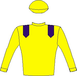 Do It Again - Silks - Yellow, royal blue epaulettes, yellow sleeves and cap