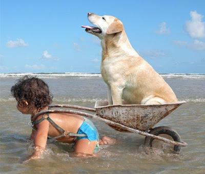 Witziges Foto aus dem Urlaub - Kind und Hund am Meer