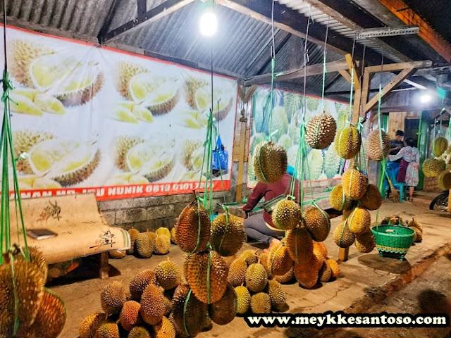 Pangkalan Durian Jambu, Surganya Para Pecinta Durian Lokal