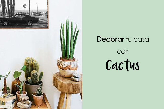 decorar-casa-con-cactus