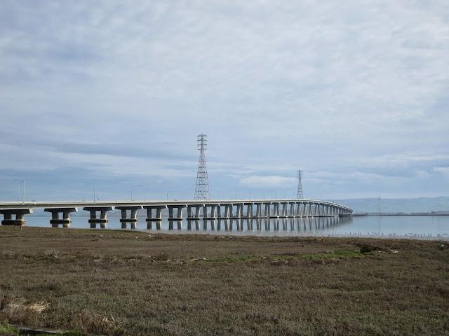 Bird watching Bay Area: view of the Dumbarton Bridge