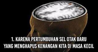 1. Karena pertumbuhan sel otak baru yang menghapus kenangan kita di masa kecil