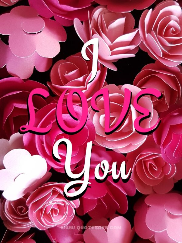 I Love You Images with Pink Roses
