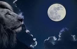 28 y 29 de Enero: Luna Llena en Leo.¡Emociónate con lo que está por venir!