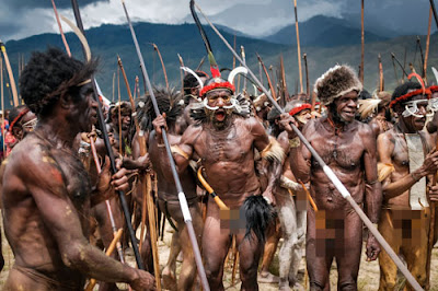 Koteka, Pakaian Adat Papua