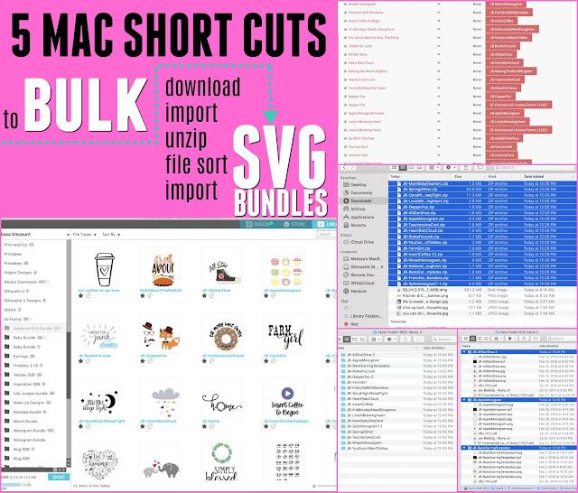 silhouette america blog, silhouette 101, bulk import, Silhouette svg files, svg silhouette,
