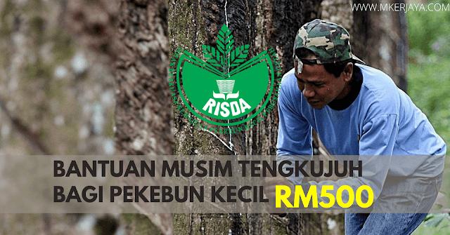 RISDA : Permohonan Bantuan Musim Tengkujuh Bagi Pekebun Kecil Sebanyak RM500 Setiap Orang