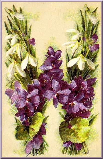 Цветочный алфавит Катарины Кляйн