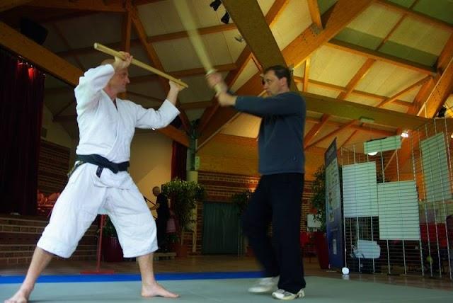 """Intervention sur """"la sécurité dans les pratiques physiques : L'exemple des arts martiaux"""""""