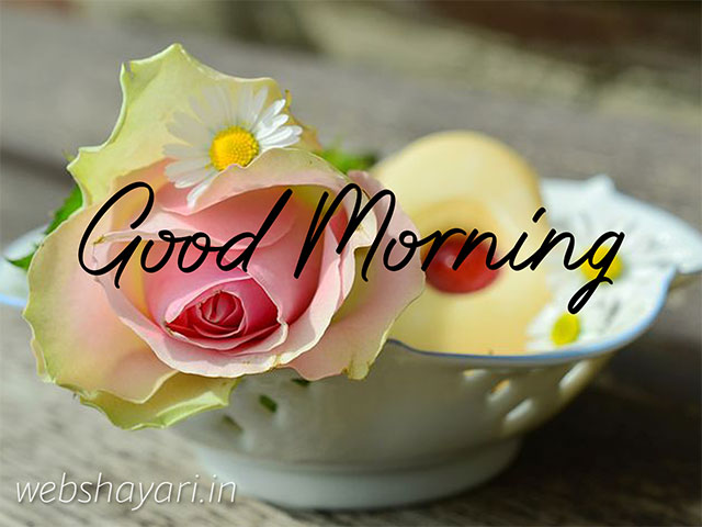 good morning images with flowers hd very good morning images