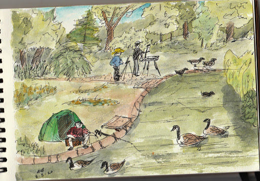 Birkenhead Park sketches series; ink and watercolour; August 2020.