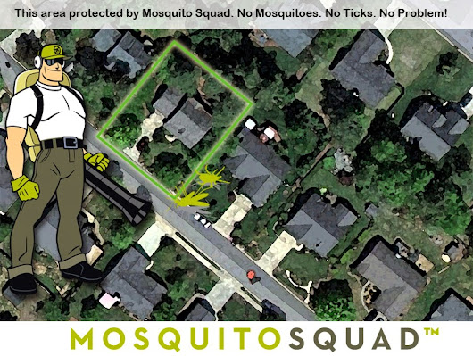 Picking Better Mosquito Spray for Lawn through the Item Reviews