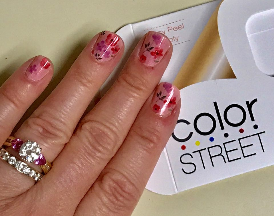 Janine\'s Cool Cats and Reviews: Product Review: Color Street Nail ...