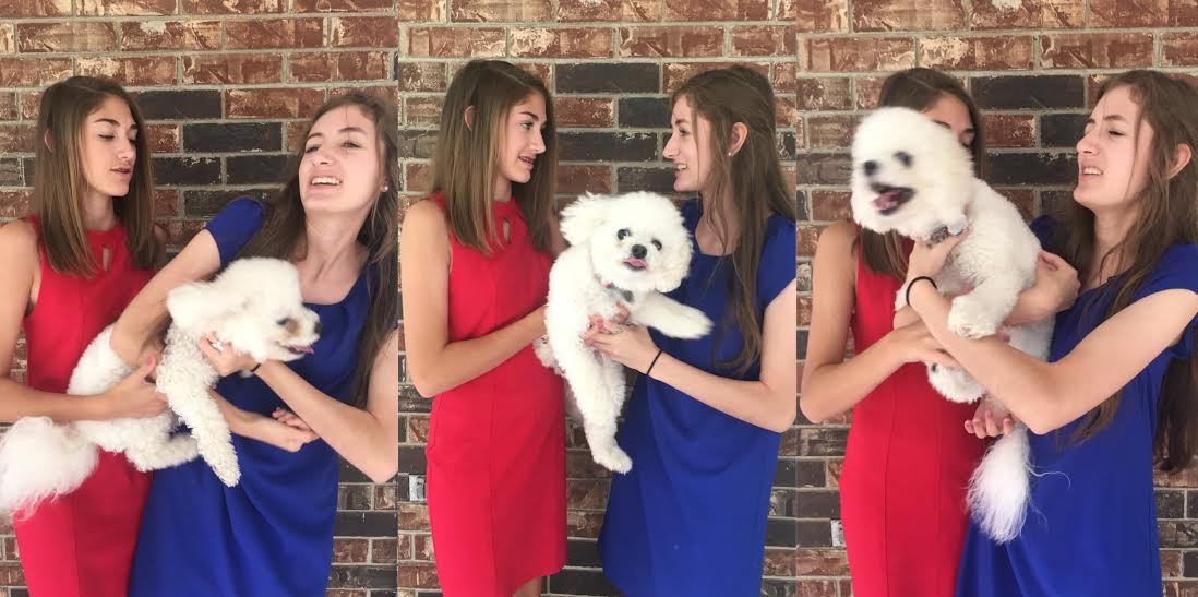 Red, White and Blue with Our Dog