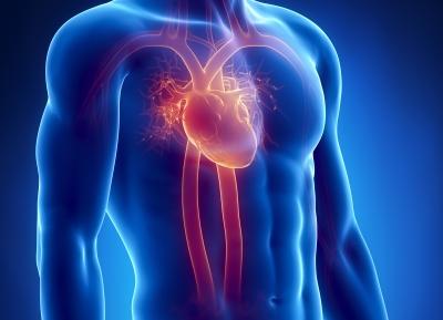 Ataque cardíaco é condição sistêmica, que vai muito além do coração