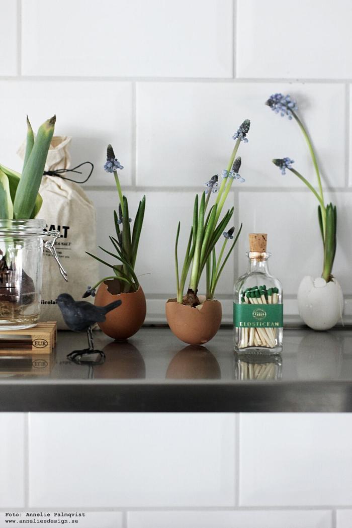 annelies design, webbutik, eldstickan, tändstickor, flaska, äggskal, vårlökar, blomma, blommor, påsk, påsken, påskpynt, kök, inredning, lastpall, lastpallar, glasburk, inspiration,