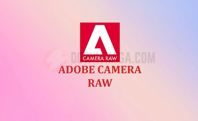 ĐỒ HOẠ - Download Adobe Camera Raw 11 3 Full Cr@ck